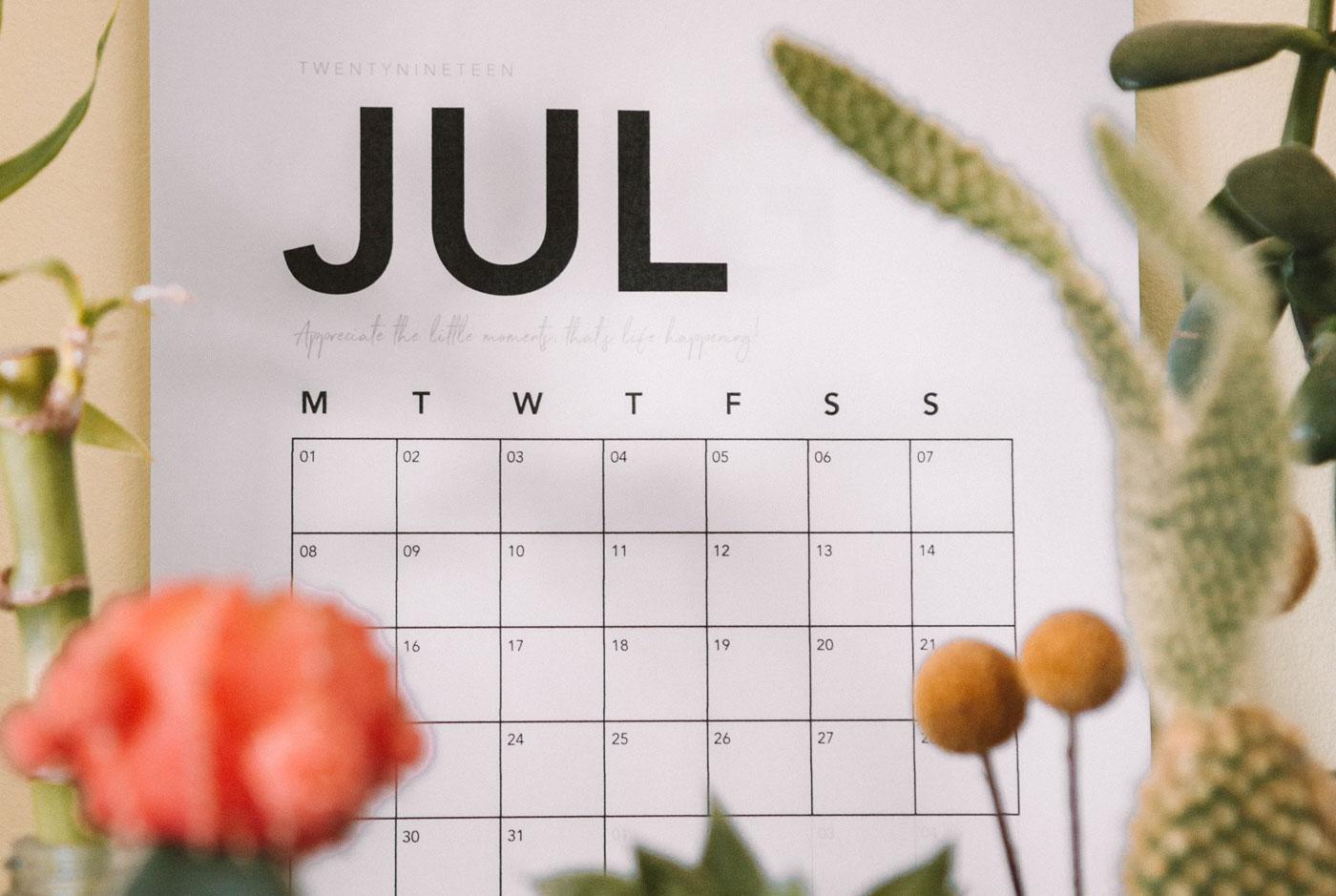 School term dates 21/22